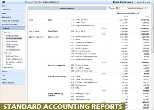 Accounting reports in standard formats