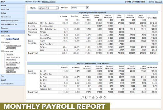 Payroll monthly standard report